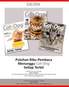 Majalah Cat & Dog