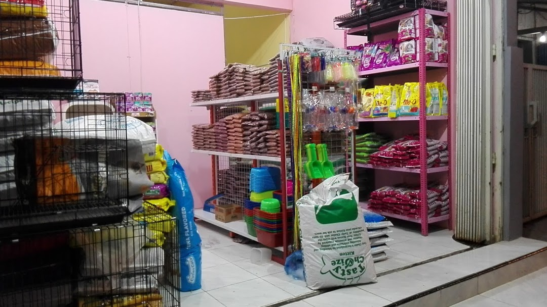 Petshop yang Terdekat di Jakarta Selatan
