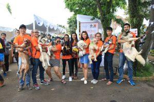 Dog Lovers Bogor (DLB)